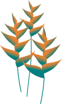 heliconia graphic