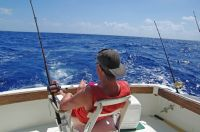 offshore fishing near Dominical